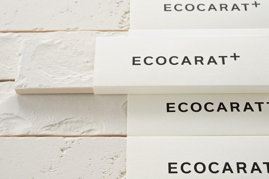 ECOCARAT2-_950